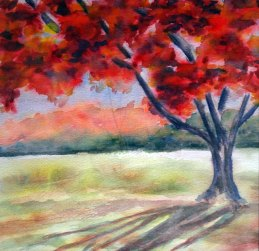 """Autumn Light"" GIFTED"