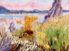 """""""Limestone Lake"""" DONATED"""