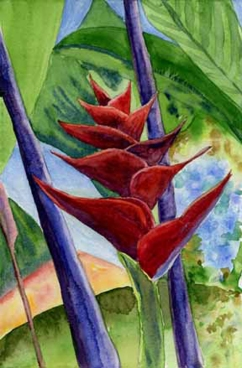 """Red Bromeliad"" GIFTED"